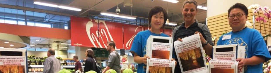 Lotus Light Continued Fundraising at Save-On-Foods for BC Wild Fire Victims
